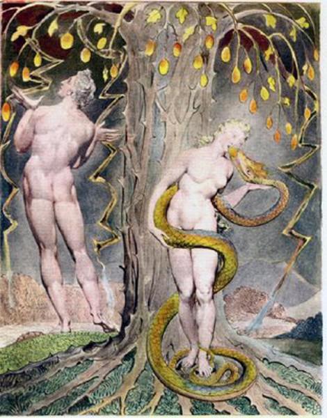 Adán y Eva. El pintor, grabador y poeta inglés, William Blake. Notemos como relaciona el artista a la mujer y la serpiente en su obra mientras que el hombre parece estar en otra esfera. El de la mujer y la serpiente parece casi un abrazo amoroso, astuto por parte de la serpiente e ingenuo por parte de la mujer: notemos como se van creando lecturas del texto. que se han ido arraigando a nuestra forma de interpretarlo