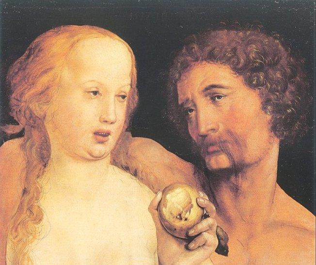 Adán y Eva, obra del artista alemán Hans Holbein el Joven (Augsburgo, 1497?1 -  1543)  se enmarcó en el estilo llamado Renacimiento nórdico. Es conocido sobre todo como uno de los maestros del retrato del siglo XVI. Produjo arte religioso, sátira y propaganda reformista... Vemos como Eva sostiene la fruta prohibida que es uno de los elementos de Génesis 2-3 del cual más se ha especulado.